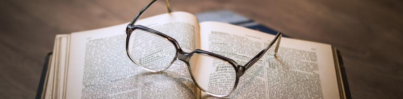 Elementos del estilo literario